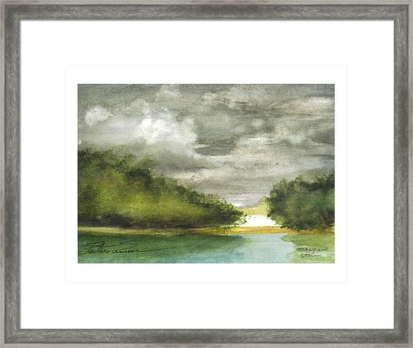 Mangrove Storm Framed Print