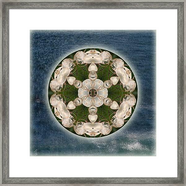 Manifesting Abundance Framed Print