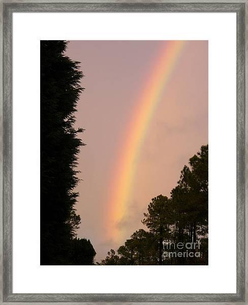 Genesis 912 Framed Print