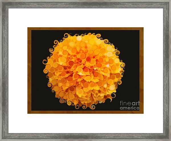 Marigold Magic Abstract Flower Art Framed Print