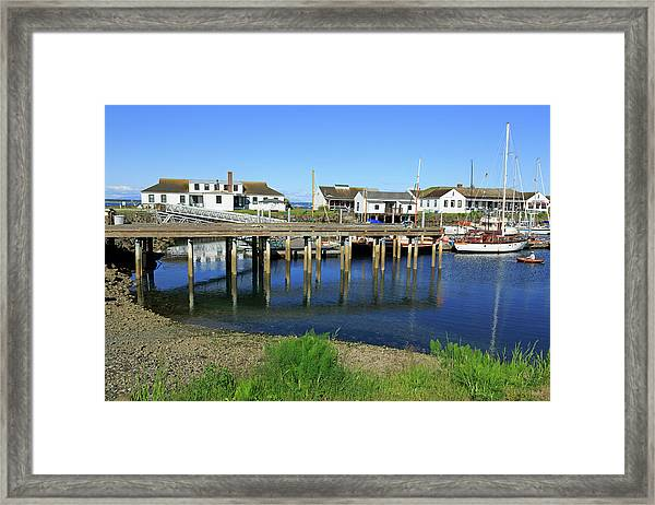 Marina In Port Townsend Framed Print