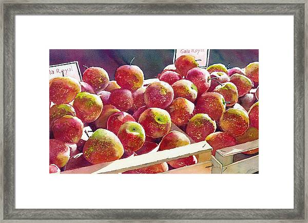 Market Apples Framed Print