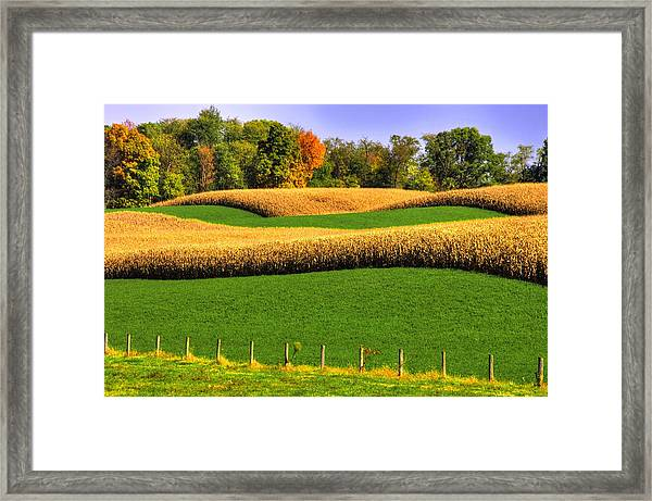 Maryland Country Roads - Swales Framed Print