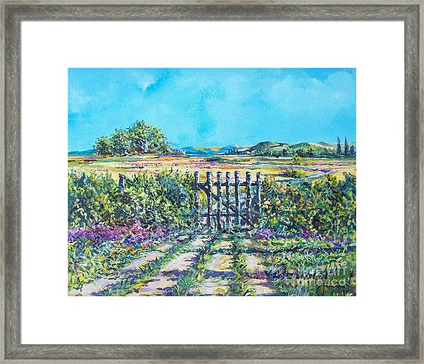 Mary's Field Framed Print