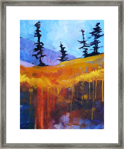 Meadow Mountain Framed Print