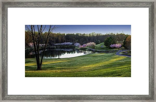Meadowlark Gardens Framed Print