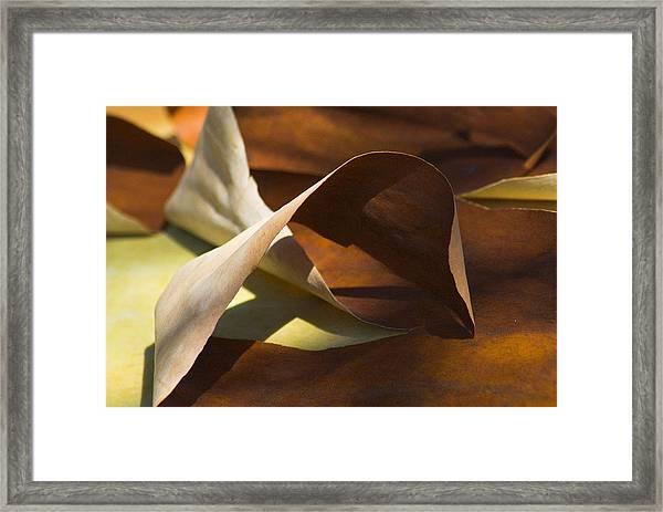 Mebius Strip Framed Print