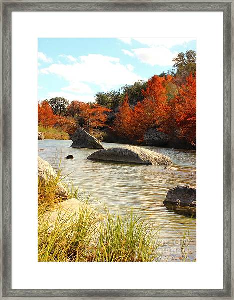 Fall Cypress At Bandera Falls On The Medina River Framed Print
