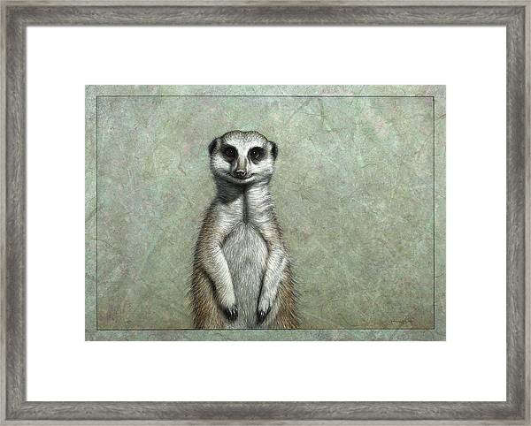 Framed Print featuring the painting Meerkat by James W Johnson