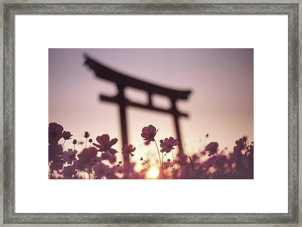 Melancholic Autumn Framed Print by Koji Tajima