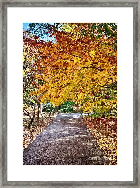 Memories Of Autumn-2 Framed Print by Tad Kanazaki