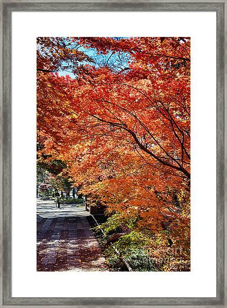 Memories Of Autumn-5 Framed Print by Tad Kanazaki