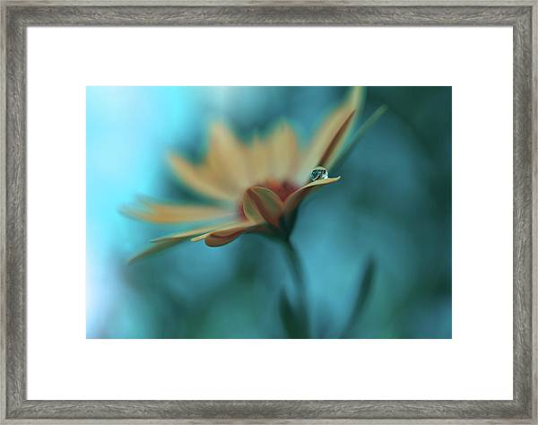Memories Of Sea... Framed Print by Juliana Nan