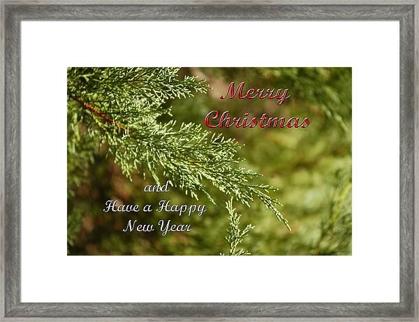 Merry Christmas 01 Framed Print