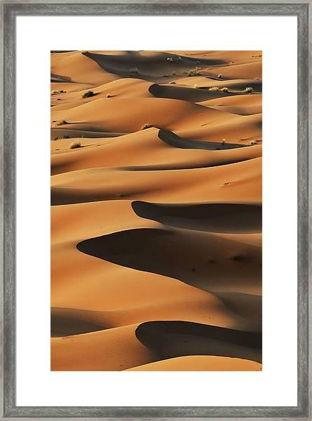 Merzouga Sand Dunes At Sunrise, Sahara Framed Print