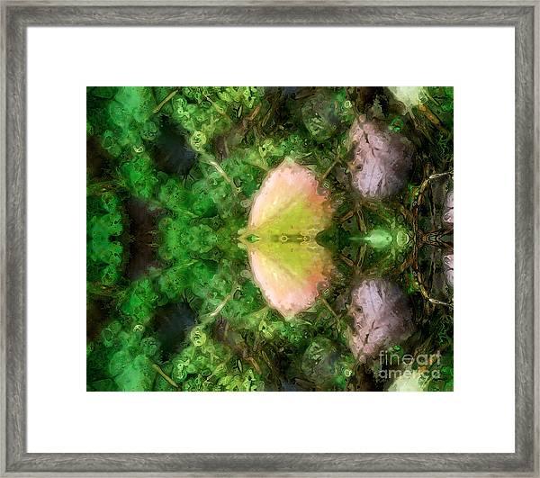 Metamorphosis 1  Framed Print