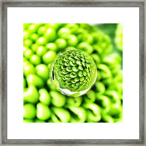 #mgmarts #micro #world #effect Framed Print