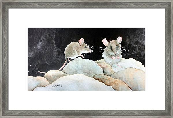 Mice On The Rocks Framed Print