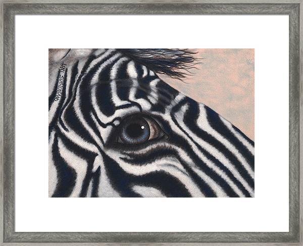 Micky Z Framed Print