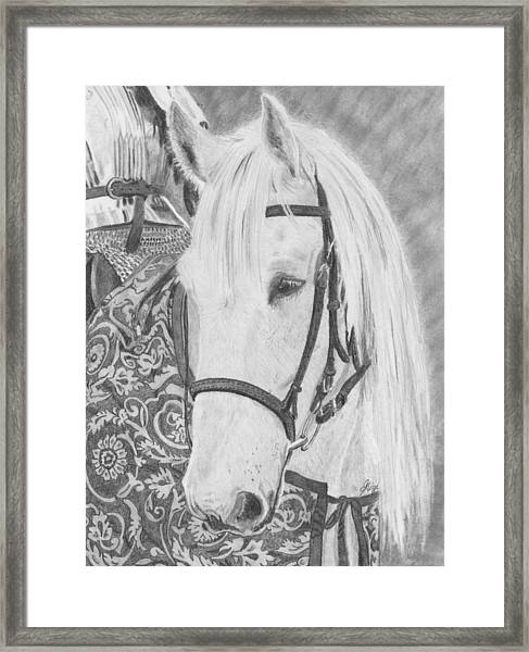 Framed Print featuring the drawing Midsummer Knight Majesty by Gigi Dequanne