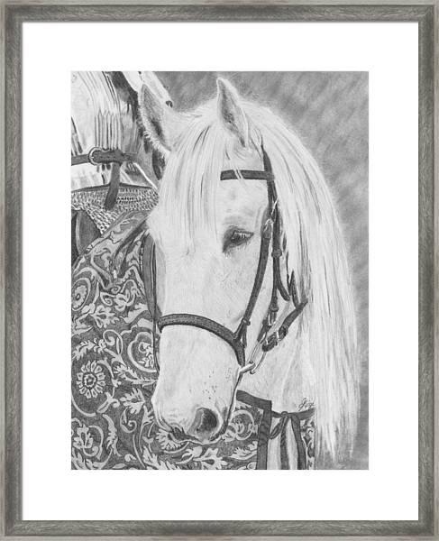Midsummer Knight Majesty Framed Print