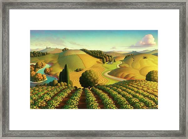 Midwest Vineyard Framed Print