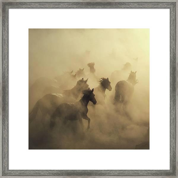 Migration Of Horses Framed Print