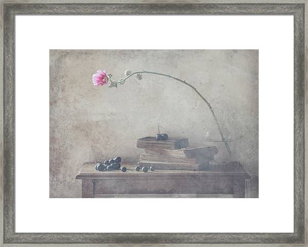 Mild Morning Of October Framed Print by Delphine Devos