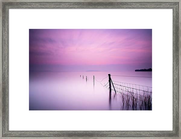 Milky Pink Framed Print