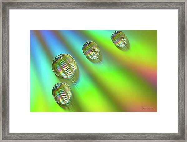 Mini Rainbows Framed Print