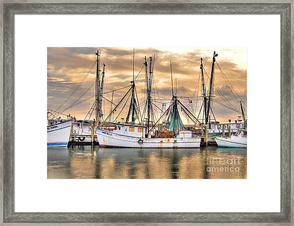 Miss Hale Shrimp Boat Framed Print