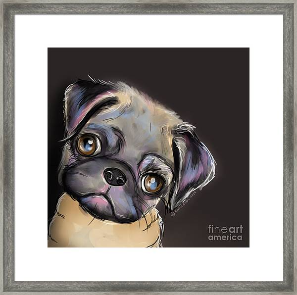 Miss Pug Framed Print