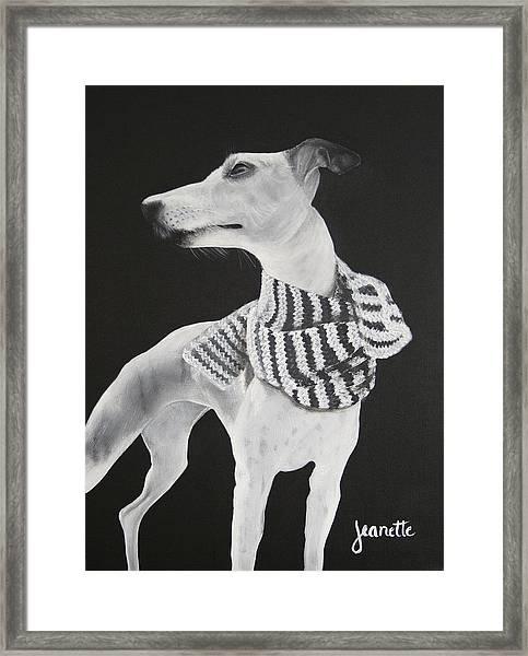 Miss Scarlett Framed Print