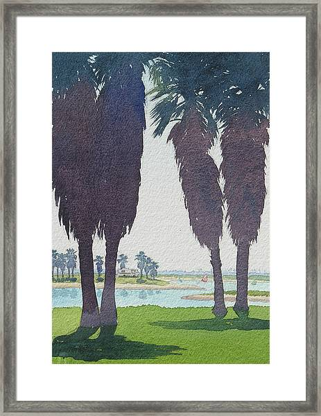 Mission Bay Park With Palms Framed Print
