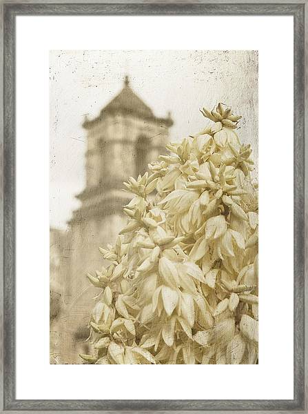 Mission San Jose And Blooming Yucca Framed Print