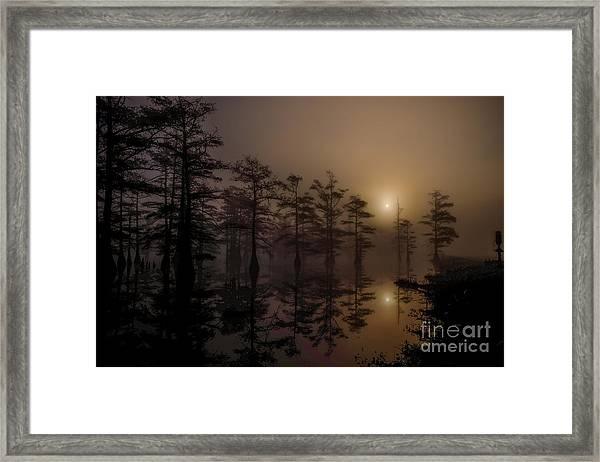 Mississippi Foggy Delta Swamp At Sunrise Framed Print