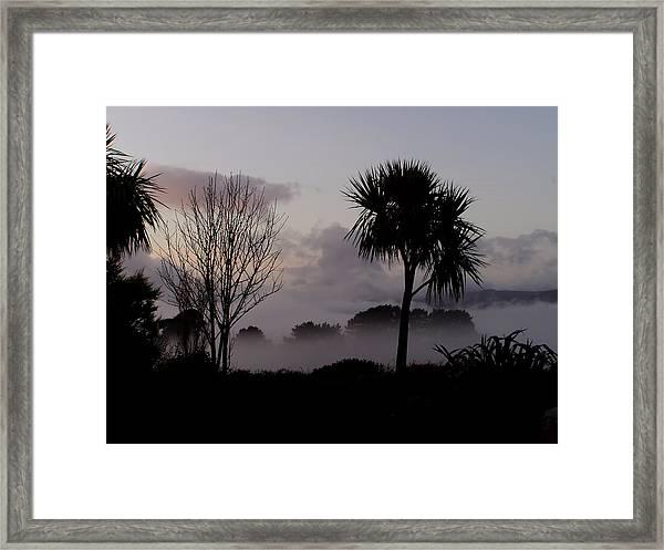 Mist And Palmtree Framed Print