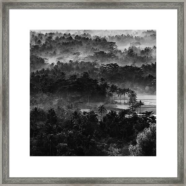 .....mist In The Morning..... Framed Print
