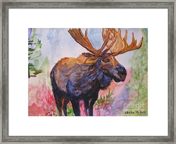 Mister Moose Framed Print