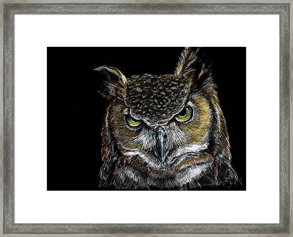 Mister Owl Framed Print