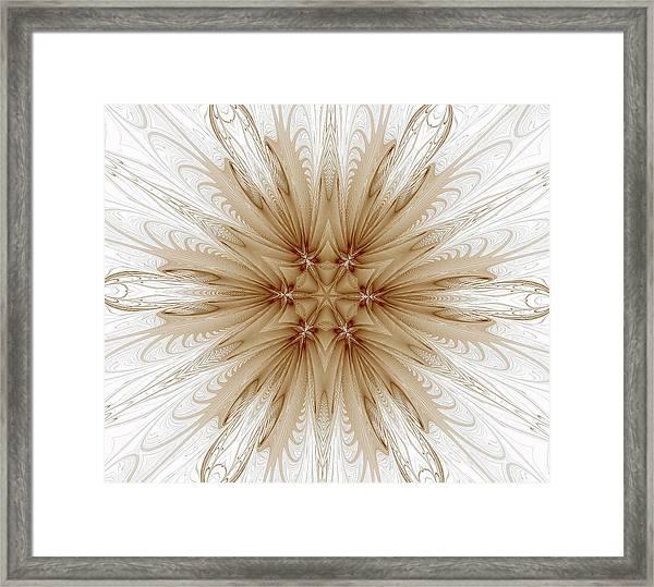 Misty Brown Mandala Framed Print