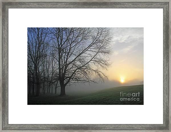 Misty Dawn Framed Print