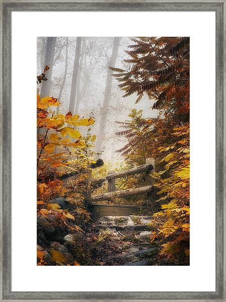 Misty Footbridge Framed Print