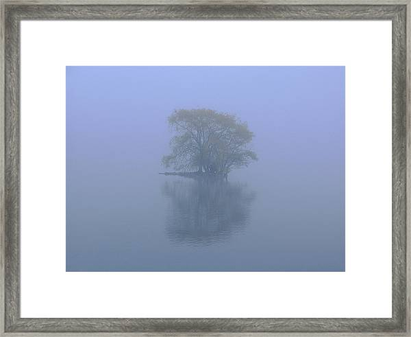 Misty Morning At Jamaica Pond Framed Print