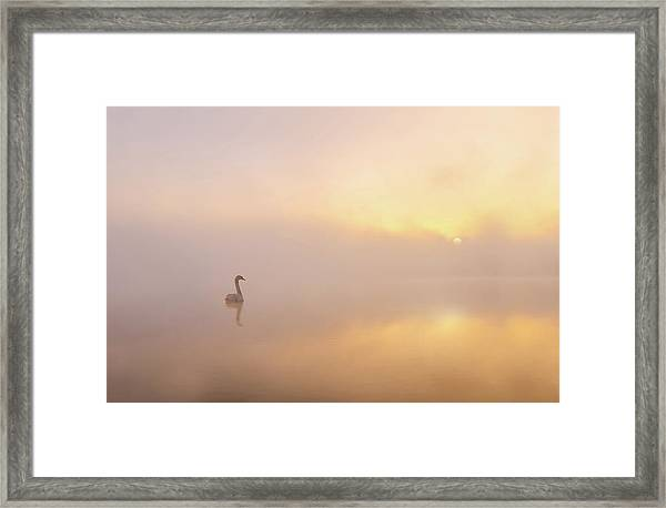Misty Morning Framed Print by Katarzyna Gritzmann