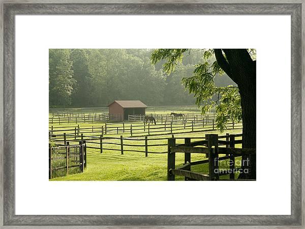 Misty Morning Maze Framed Print