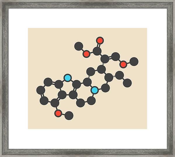 Mitragynine Molecule Framed Print by Molekuul/science Photo Library