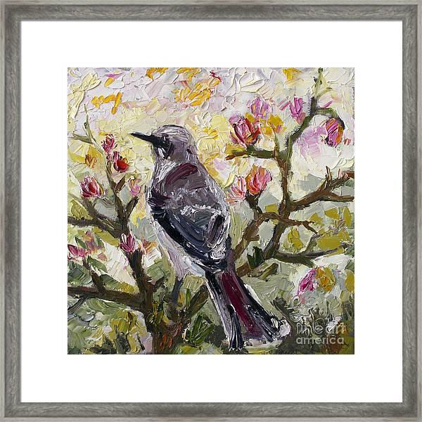 Mockingbird By My Window Framed Print