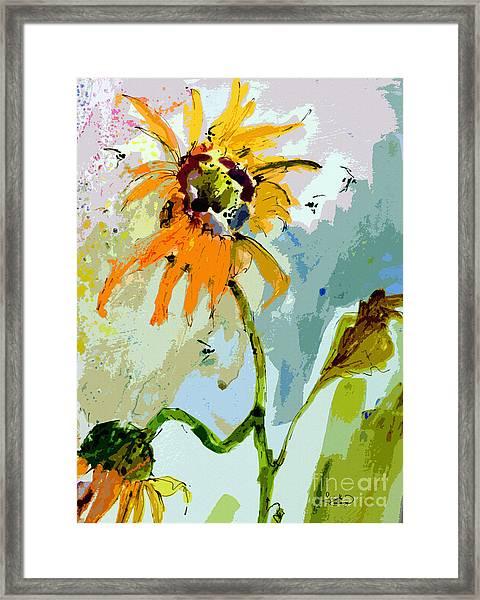 Modern Sunflowers And Bees Art Framed Print