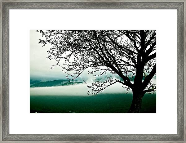 Framed Print featuring the photograph Moment by HweeYen Ong